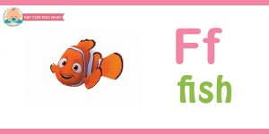 Flashcard cho bé FISH