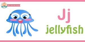 Flashcard cho bé - jellyfish