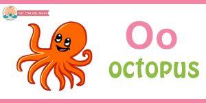 Flashcard cho bé - octopus