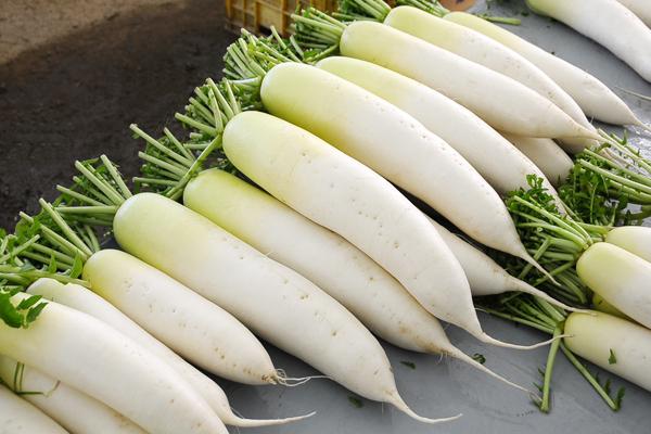 Củ cải là thực phẩm hàng đầu chữa ốm nghén cho bà bầu
