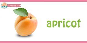 Apricot-flashcard