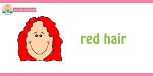 flashcard cho bé chủ đề mái tóc4