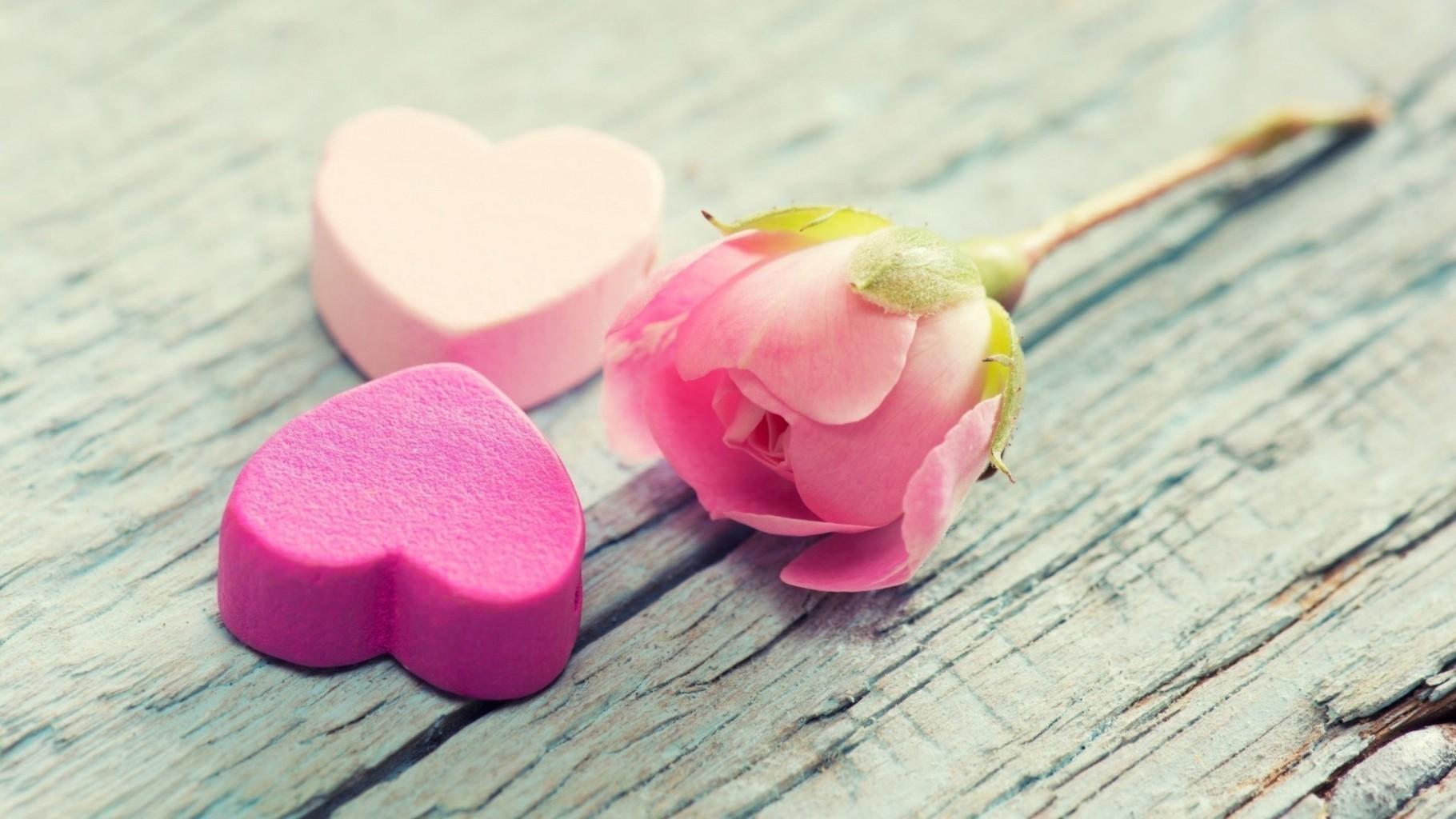 Càng lớn càng hiểu ra, yêu hay không chỉ là thứ yếu, quan trọng là…