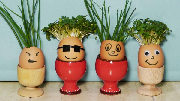 Hãy dừng ngay việc vứt bỏ vỏ trứng bởi đây chính là thứ giúp trẻ phát triển trí sáng tạo.