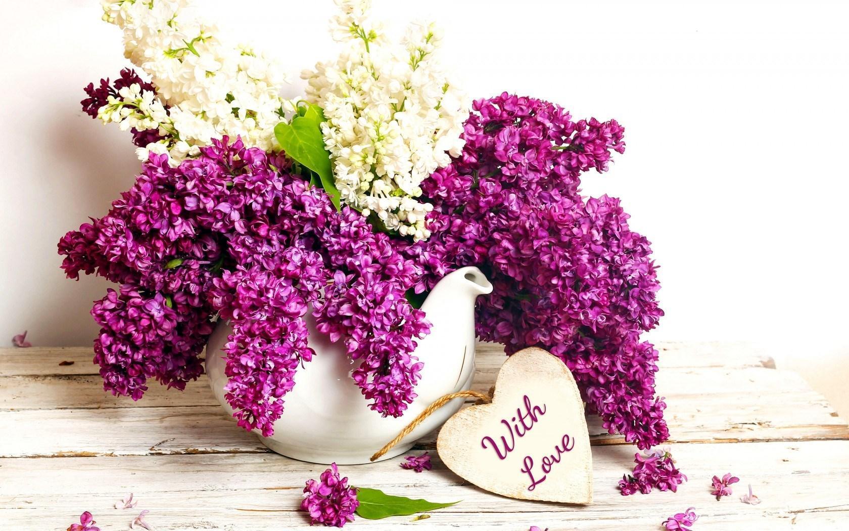 Mẹo cắm hoa tử đinh hương dài