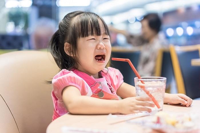 Phương pháp dạy con của người Nhật hướng dẫn bạn cách chế ngự khủng hoảng tuổi lên 2