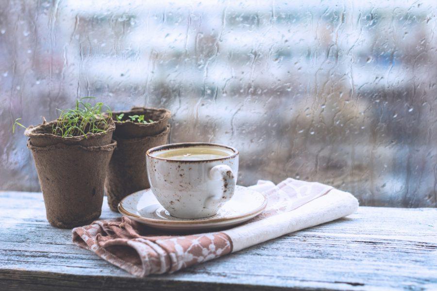 rainy-season-in-vietnam-3-e1564394108703