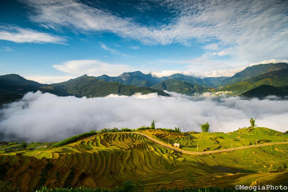 Top 4 địa điểm săn mây tại Sapa