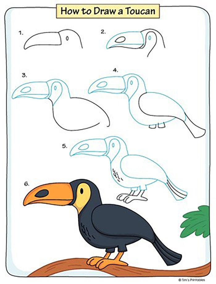 Bé vẽ chim