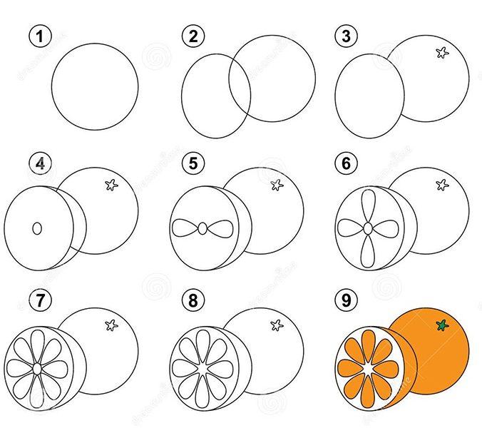 Hình vẽ trái cam
