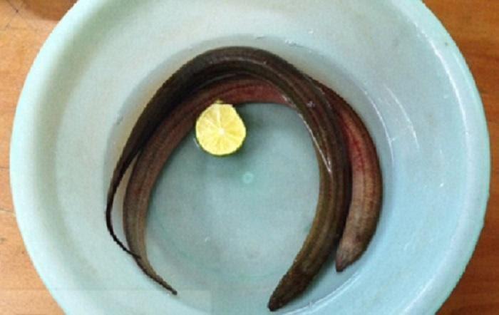 Mẹo làm sạch lươn bằng nước vo gạo và chanh