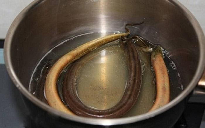 Mẹo làm sạch lươn vô cùng đơn giản